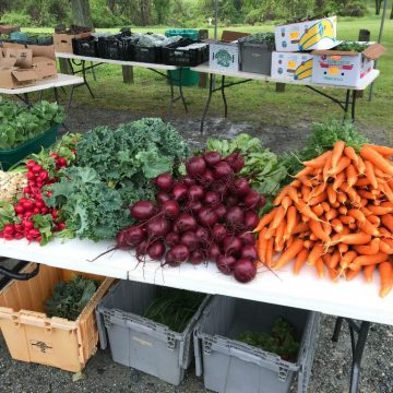New Castle Farmer's Market has been in continuous operation since 1954 and features local produce, a flea market, and Amish goods.